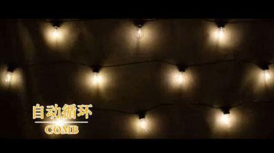 Warm white bulb light string 3