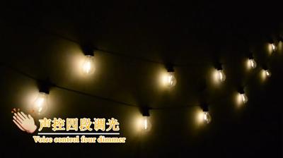 Warm white bulb light string